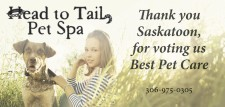 Thank you Saskatoon, for voting Head to Tail Best Pet Care