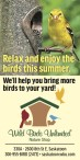Relax and enjoy the birds this summer.